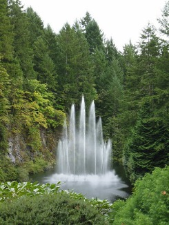 3-1379493462-2-ross-fountain