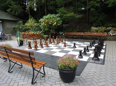 Chess anyone?