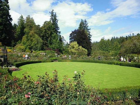 3-1379493462-1-rose-garden
